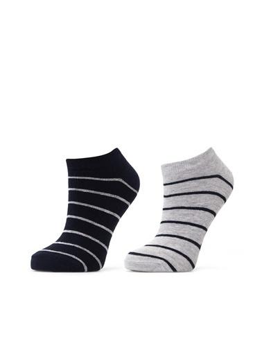 Lee Cooper Çorap Renkli